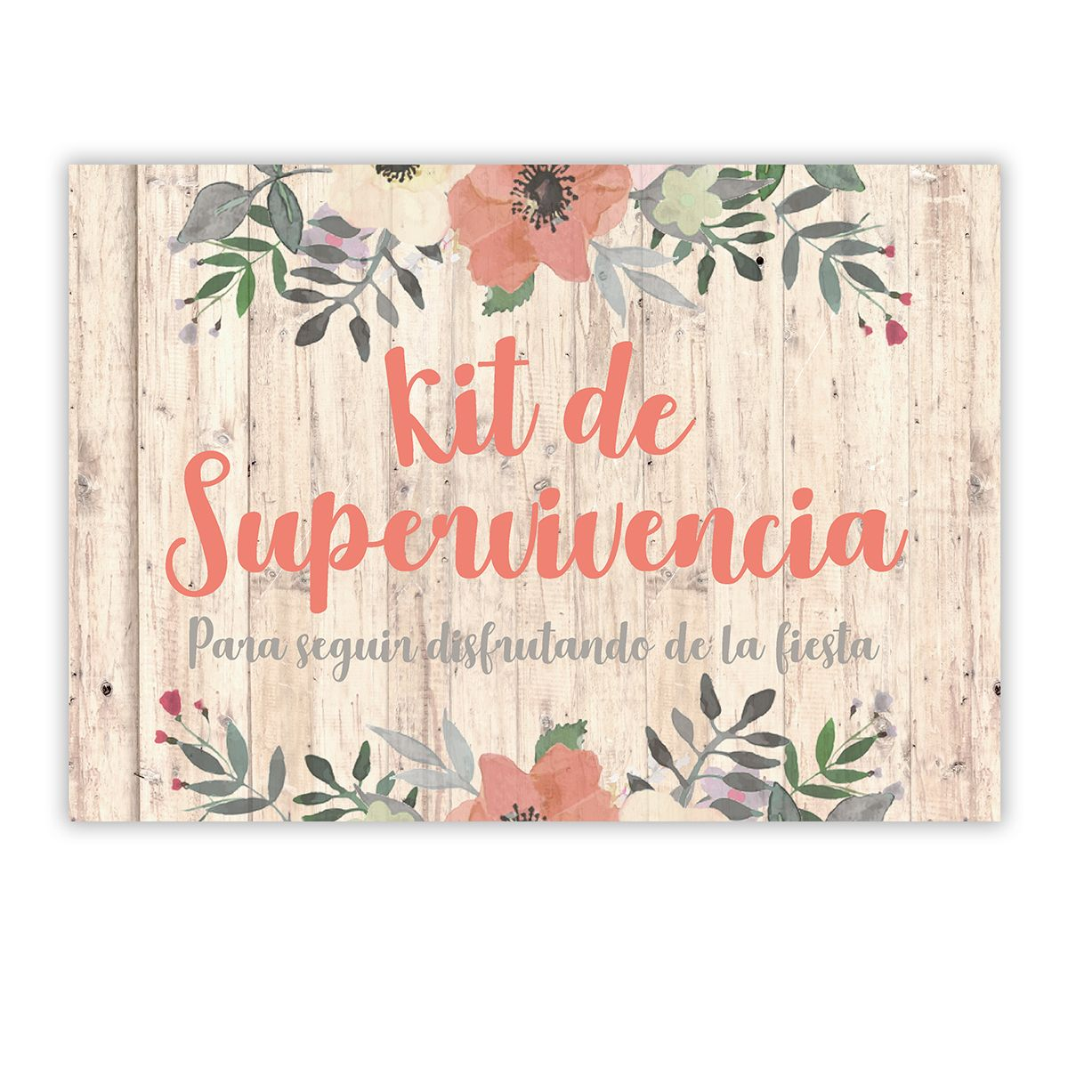 Cartel Kit supervivencia Liza