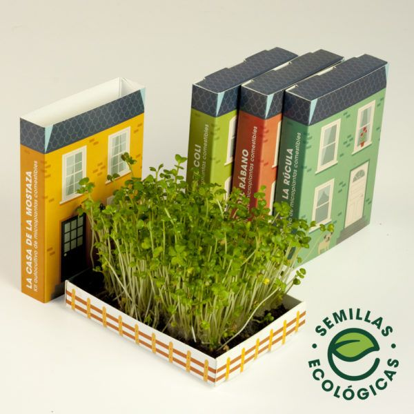 Microplantas para ensaladas